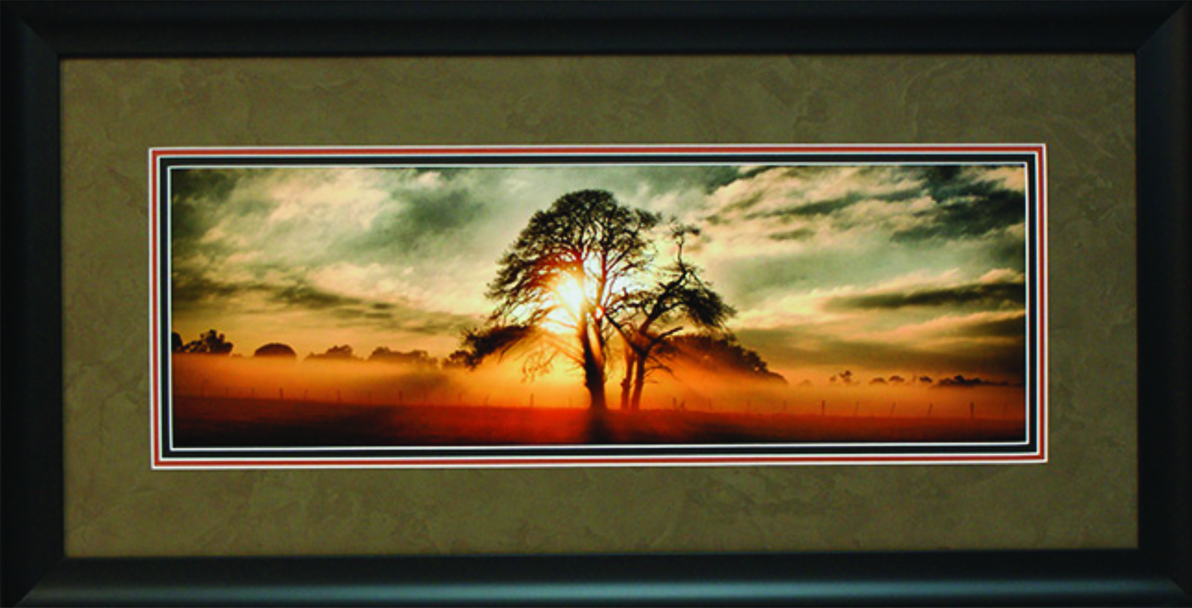 Framinge Edge- Custom Framing, Sports Memorabilia